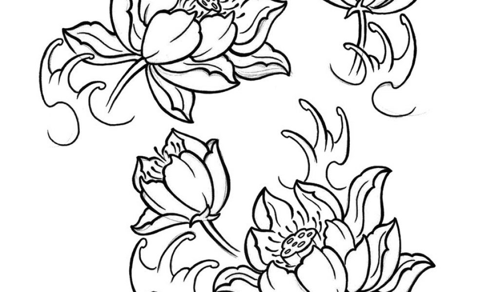 1024x600 Japanese Lotus Flower Tattoo Images About Ink.