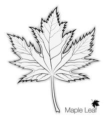 213x240 Maple Leaf, Outline Photos, Royalty Free Images, Graphics, Vectors