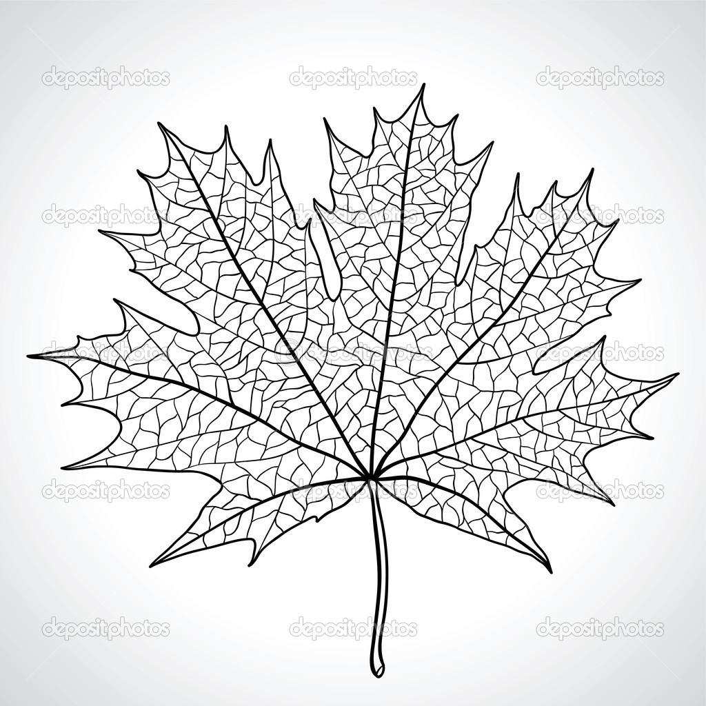 1024x1024 Maple Leaf Tattoo Design Over Black Background In 2017 Real Photo