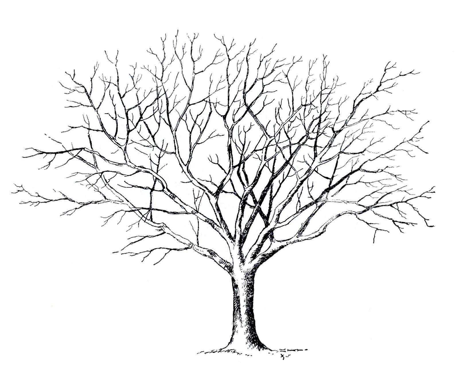 Erfreut Telefon Baum Vorlagen Ideen - Beispiel Anschreiben für ...