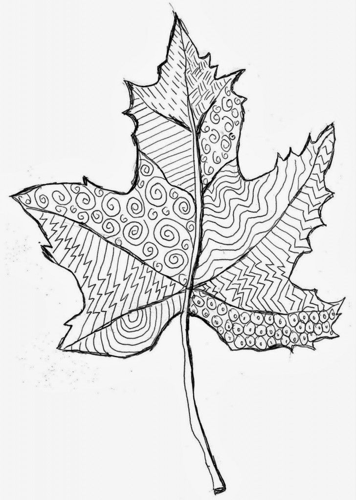 728x1024 Drawn Leaf Art