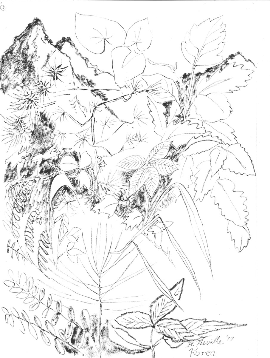 906x1200 Drawings Page 2 Beth Neville