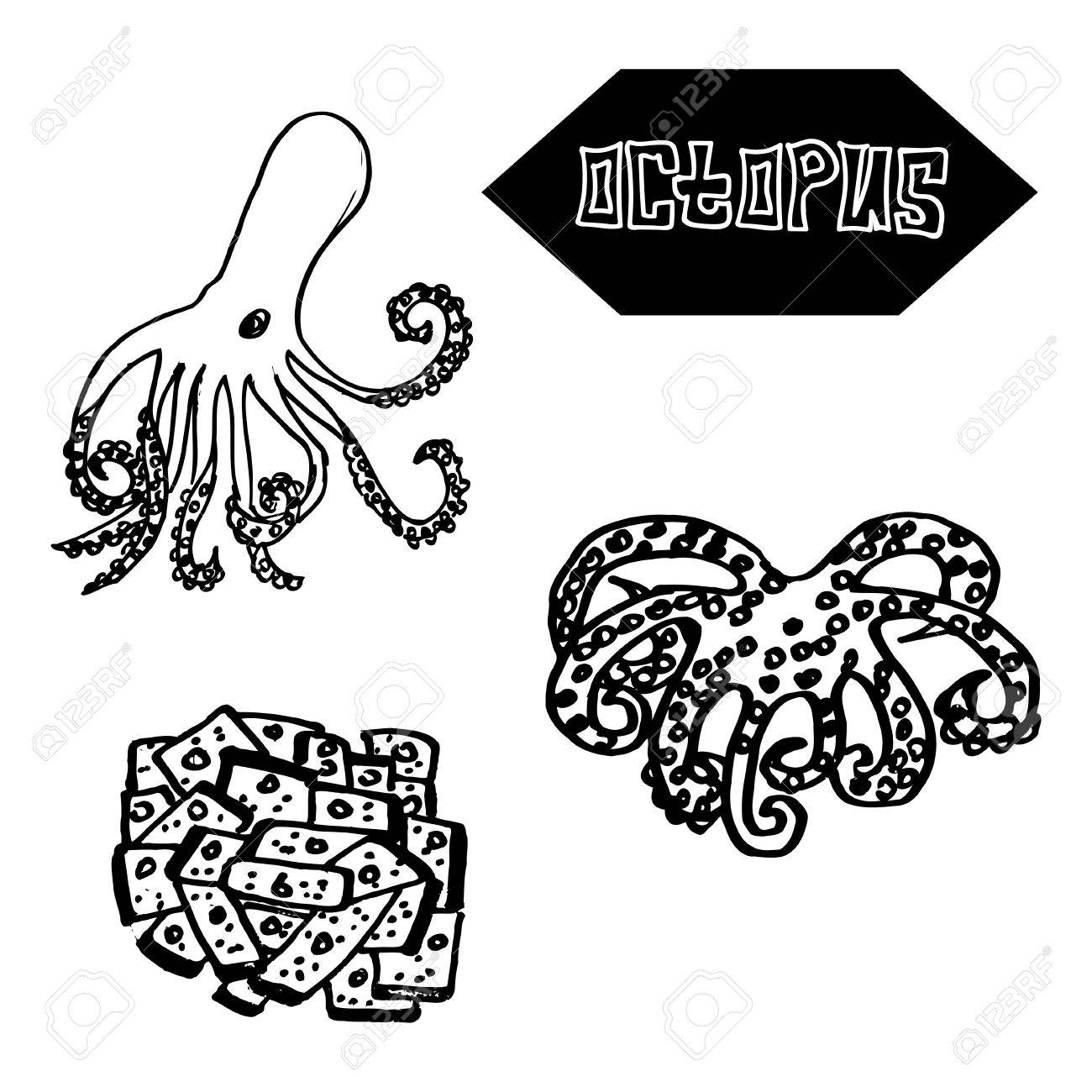 1300x1300 Seafood Octopus Japanese And Spanish Cuisine. Vector Illustration