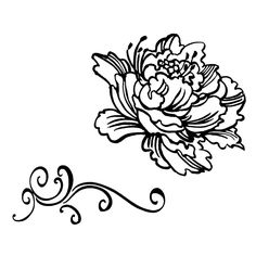 236x236 Japanese Peonies Clipart