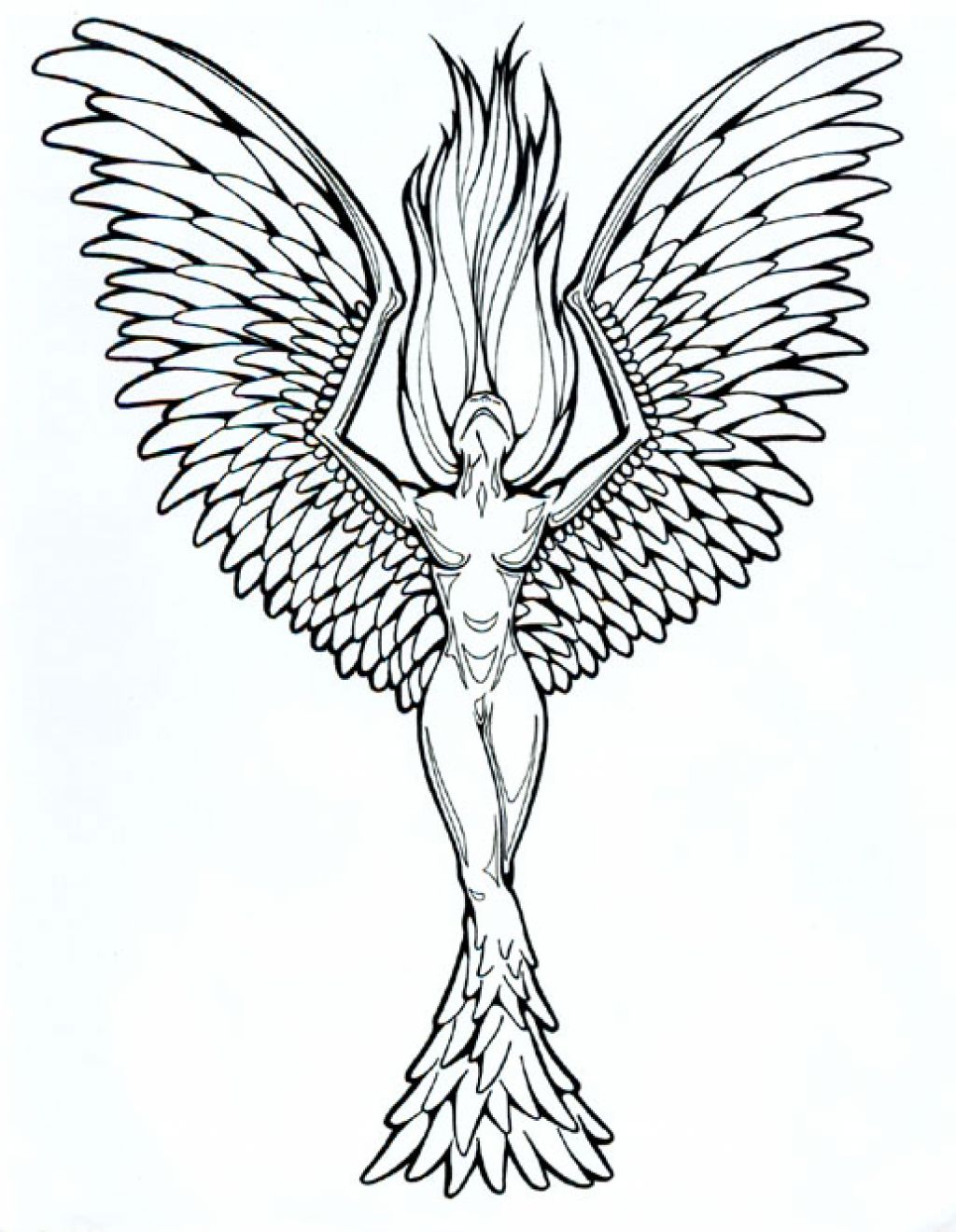 1024x1319 Japanese Phoenix Tattoo Designs Drawing