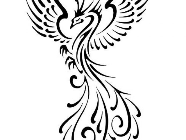 640x480 Tribal Phoenix Tattoo Meaning Japanese Phoenix Tattoo Designs