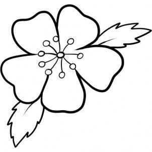 302x302 Drawn Ume Blossom Doodle