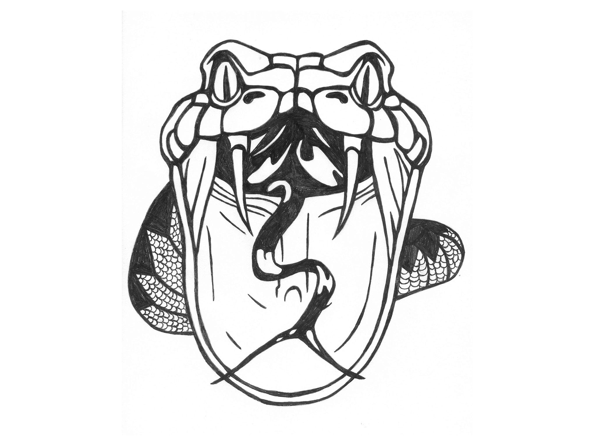 2048x1536 Collection Of Snake Knot Tattoo Design