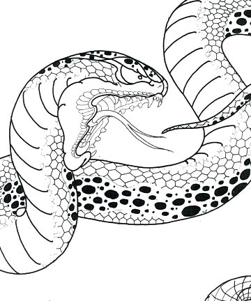 360x432 Dana Helmuth Venom One Of The Snakes In The Book! Tattoos