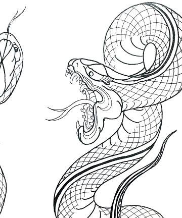 360x432 Dana Helmuth Venom Tattoo Education