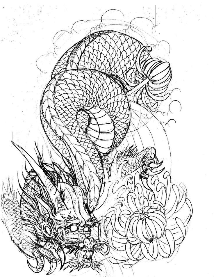 736x952 Japanese Chrysanthemum Flower Drawing Seven 400 Investingbb