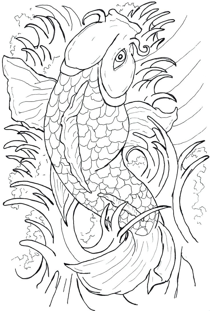 736x1090 Japanese Koi Fish Tattoo Designs Free Design Lucky Choice Koi Fish
