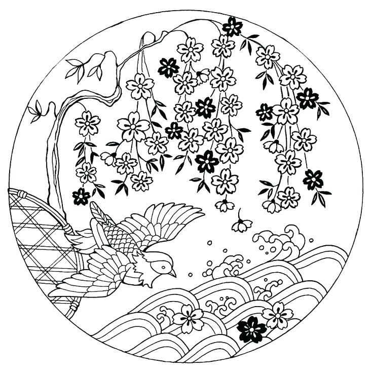 736x736 Japanese Coloring Books Cherry Blossoms With Bird Book On Temple