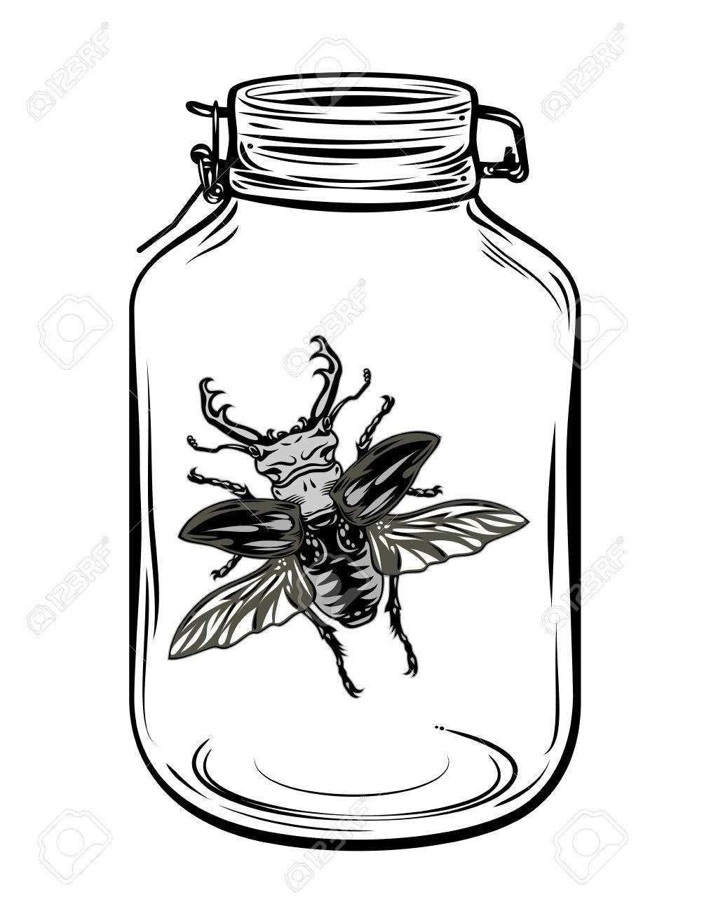 1024x1300 Beetle In A Glass Jar, Freehand Drawing Royalty Free Cliparts
