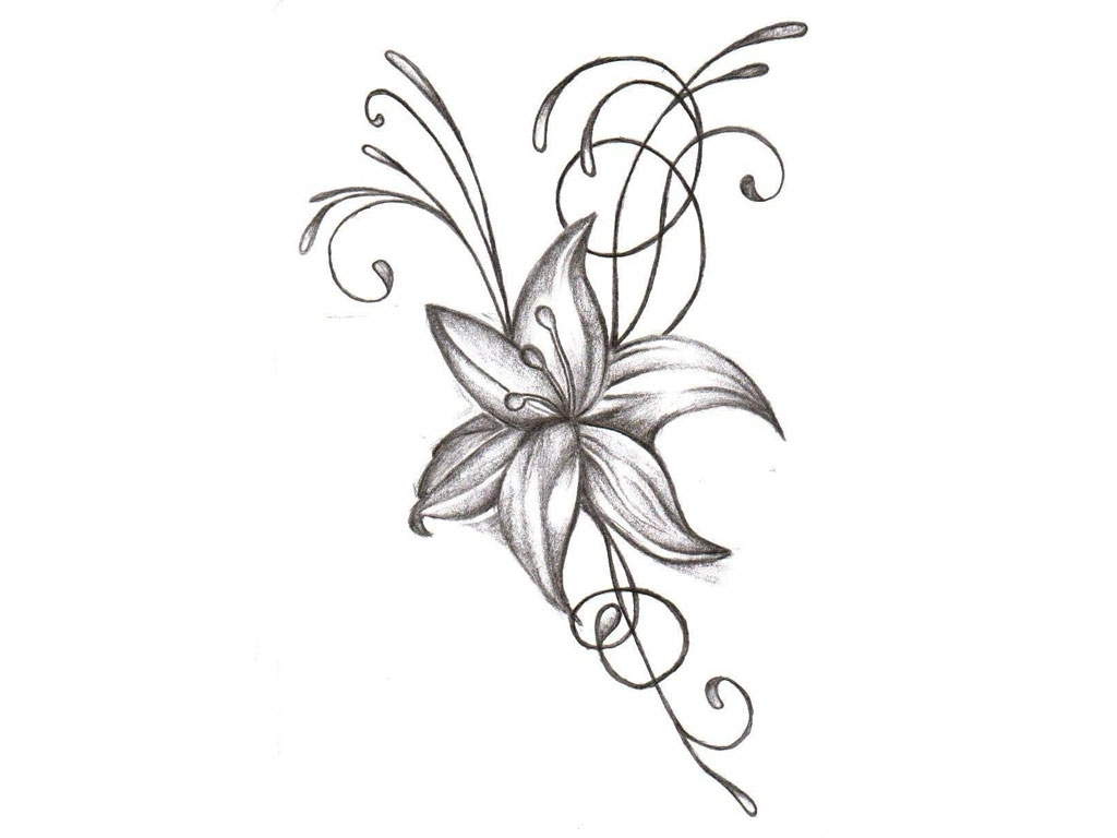 Jasmine drawing flower at getdrawings free for personal use 1024x768 jasmine flower tattoo design flower tattoo drawing 1000 images izmirmasajfo