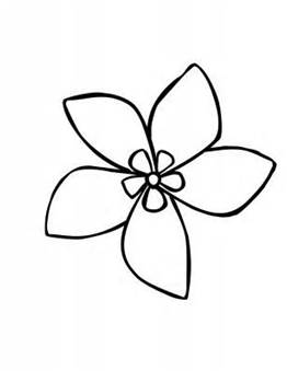 262x339 Drawings Of Flowers, Jasmine