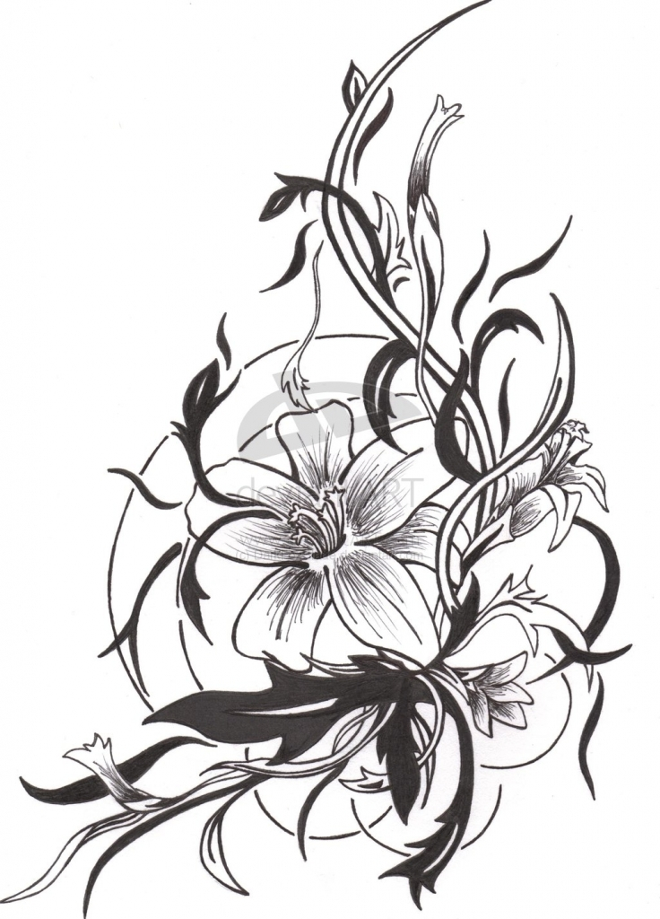 736x1024 Flower Tattoo Drawing 1000 Images About Tattoo