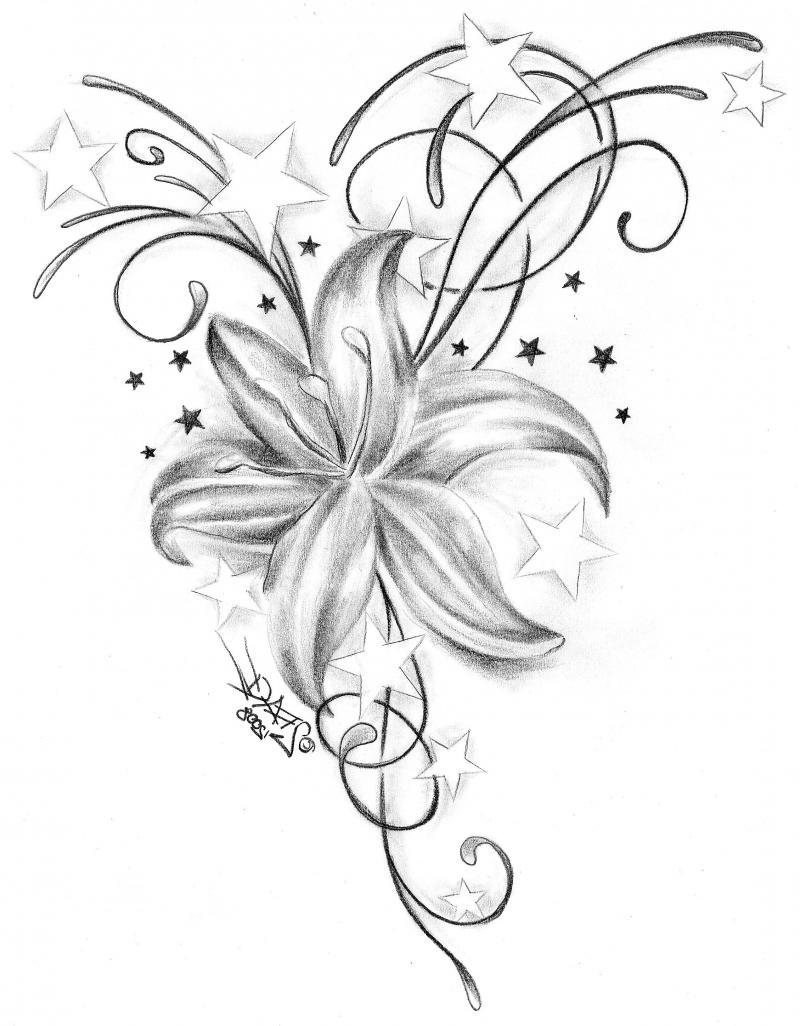 800x1026 Star Flower Tattoo Designs Group