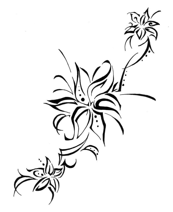 736x905 Collection Of Tribal Flower Tattoo Drawing