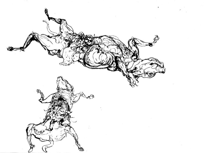 670x503 Drawings