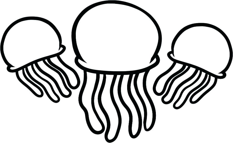 900x551 Jellyfish Coloring Pages Jelly Fish Coloring Page Letter J