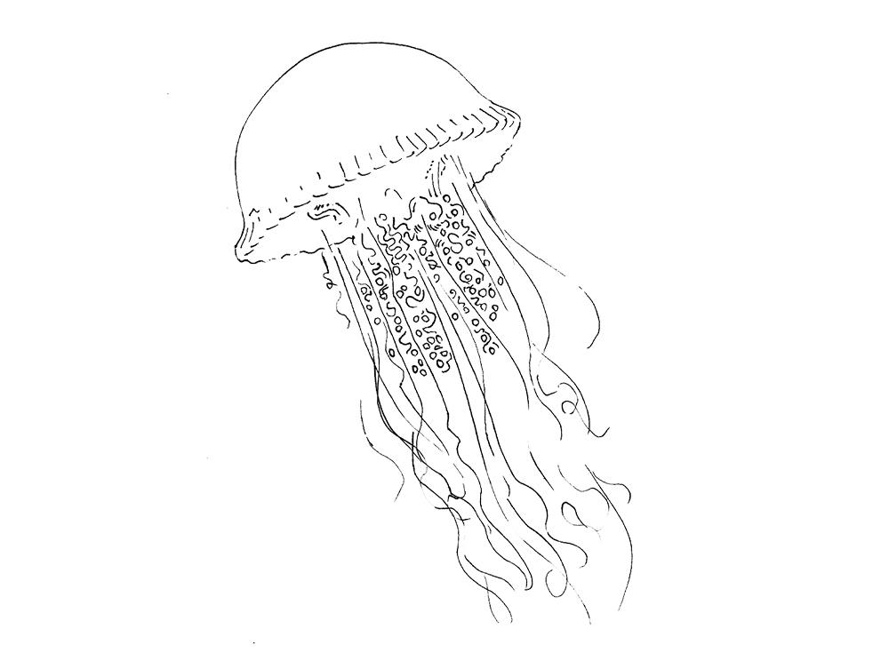1000x744 Jellyfish Temporary Tattoo