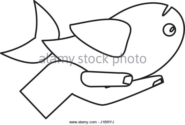 640x433 Fish Miracle Jesus Christ Religious Stock Photos Amp Fish Miracle