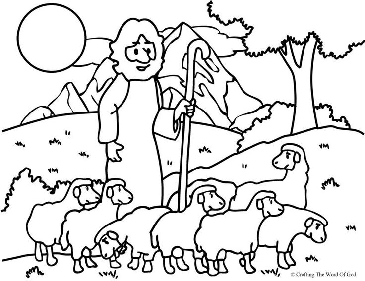 736x567 Jesus Hundred Sheep Coloring Pages For Kids