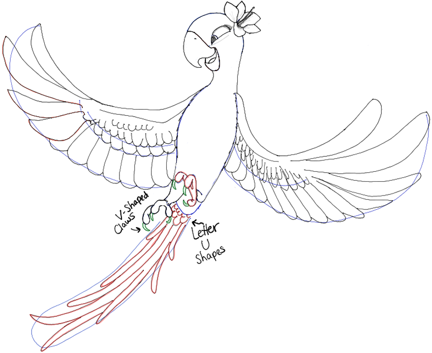 850x695 How To Draw Jewel From Rio And Rio 2 In Easy Steps Drawing