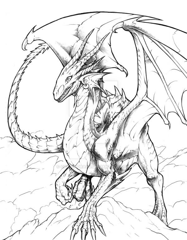 600x771 Jewel, The Dragon Scketch By Chaos Draco