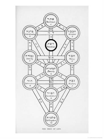 366x488 The Tree Of Life Of The Jewish Caballa Giclee Print By J.f.c.