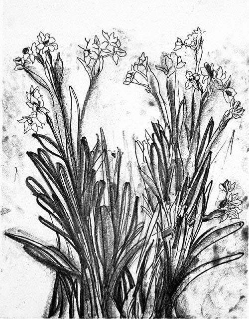 500x639 Black Amp White Flowers Ii Original Art By Jim Dine Picassomio