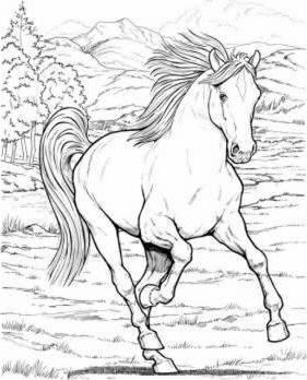 281x348 Wonderful World Of Horses Coloring Book John Green 9780486444659