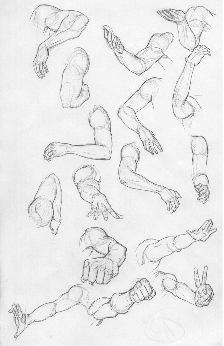 885x1366 Anatomy Drawing Marathon Art Prof Visual Art Essentials