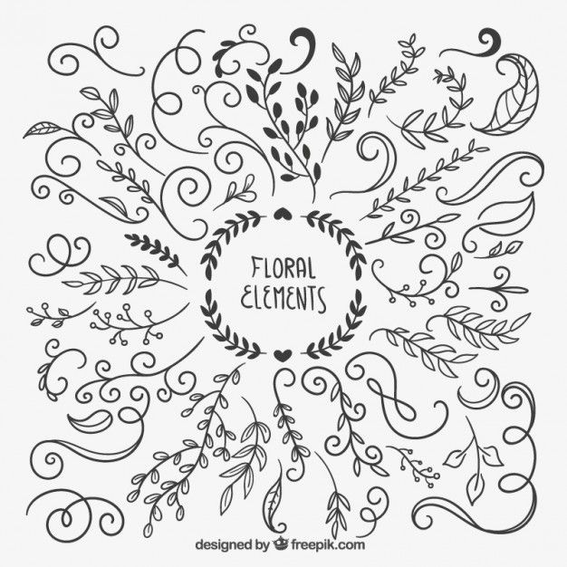 626x626 Hand Drawn Floral Elements ~ Art, Ads Amp Humor ~
