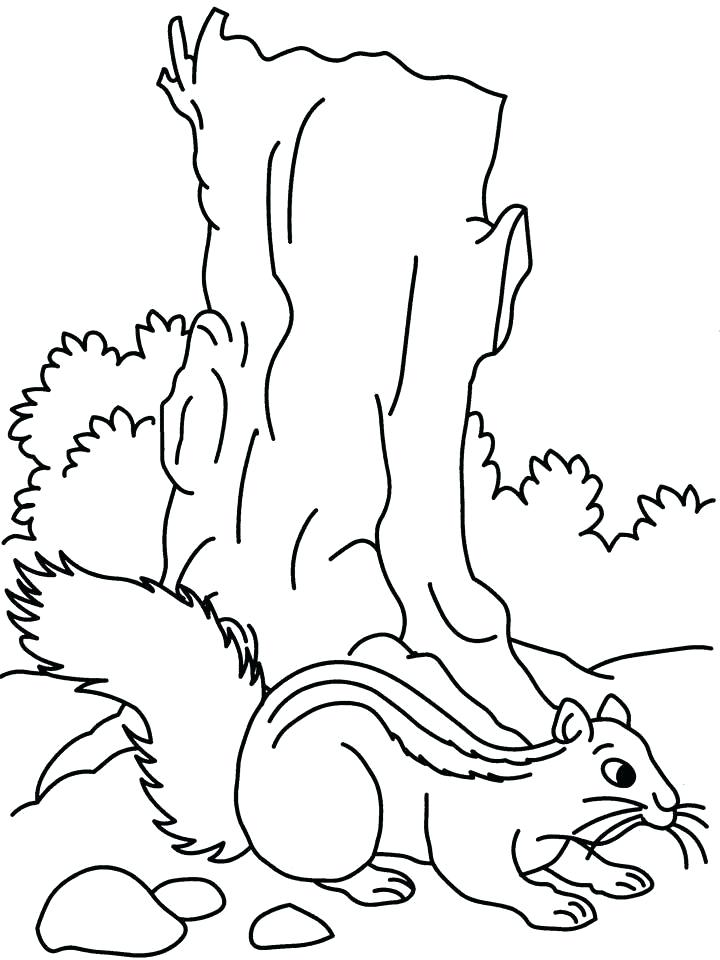 jumbo coloring pages - jumbo jet drawing at free for personal