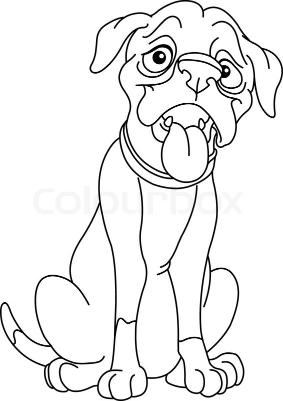 566x800 Outlined Boxer Dog Stock Vector Colourbox