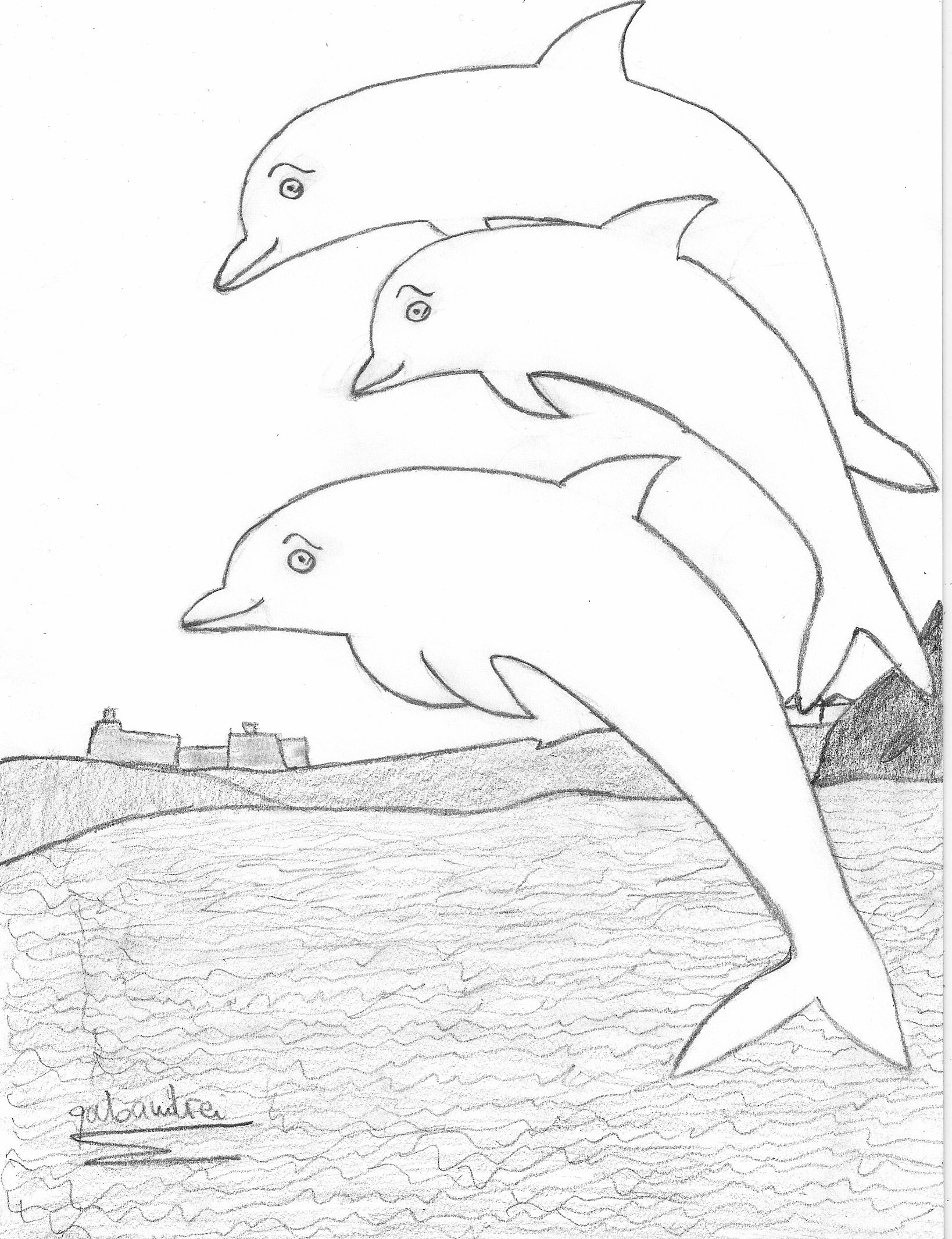 Jumping Dolphin Drawing