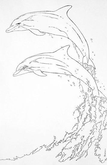 357x550 Dolphins Jumping Posters By Juan Alcantara Redbubble