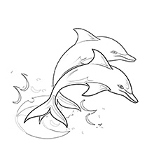 230x230 Top 20 Free Printable Dolphin Coloring Pages Online
