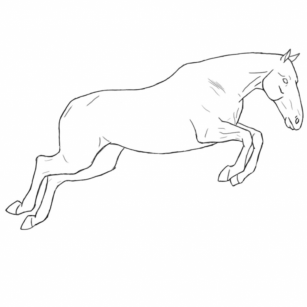 1024x1024 Horse Jumping Drawing Jumping Horse Lines Equidedesigns