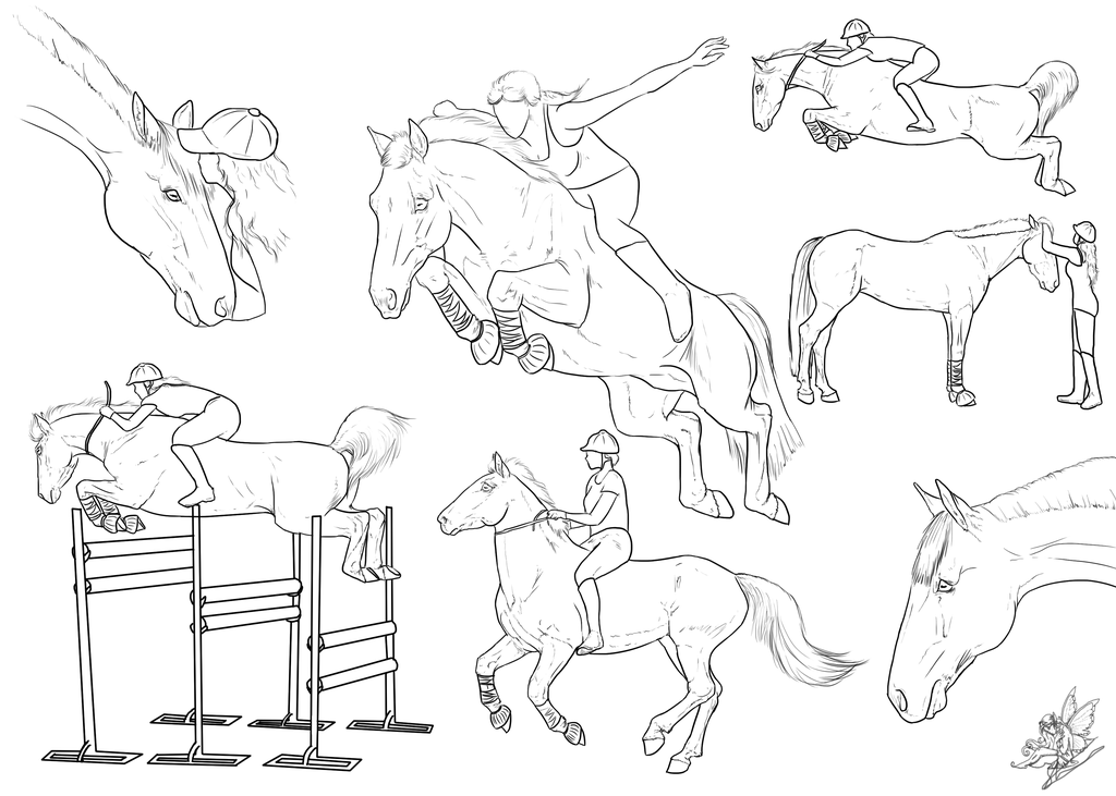 1024x731 Horse Jumping Collage By Emmy1320