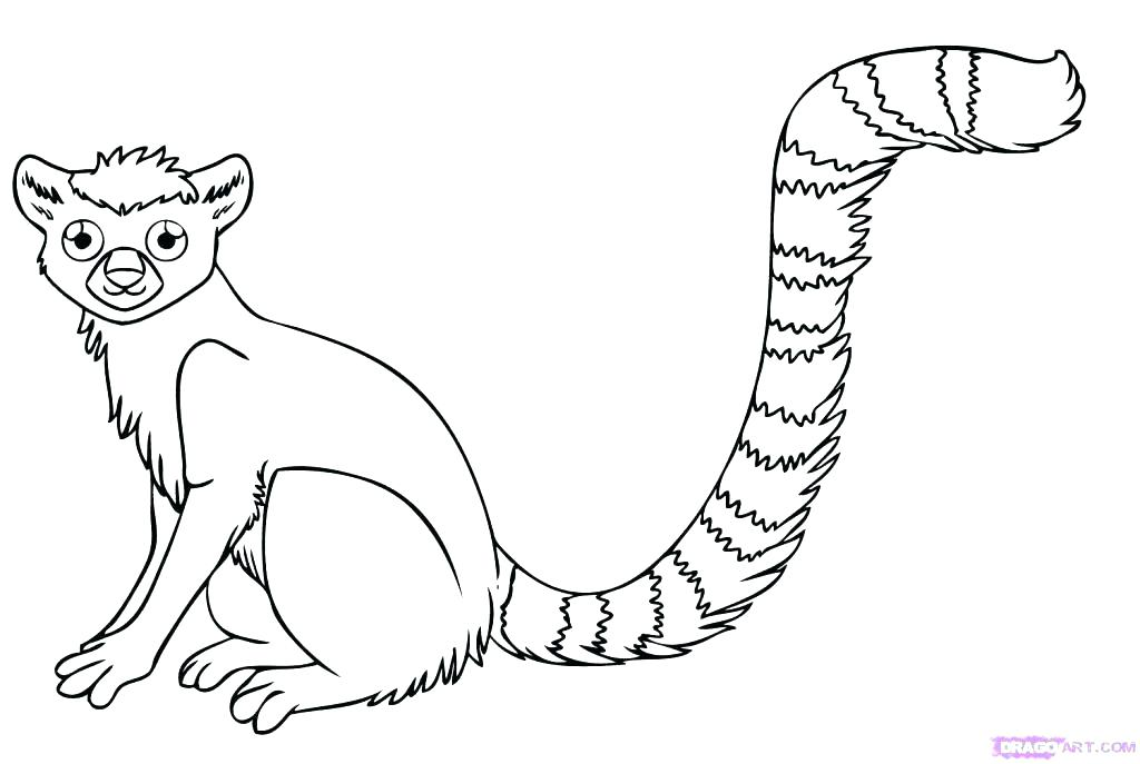 1024x687 Jungle Animals Coloring Page Jungle Animal Coloring Sheets Jungle