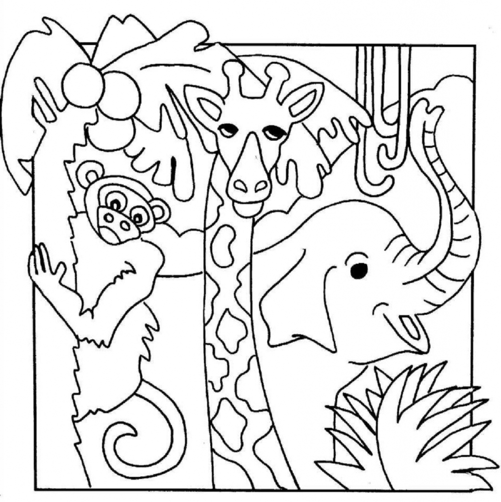 1022x1024 Drawing Of Jungle Animals Drawings Of Jungle Animals
