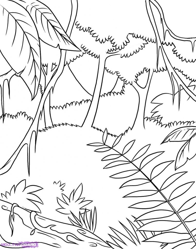 806x1024 Easy To Draw Rainforest Animals Easy To Draw Rainforest Animals