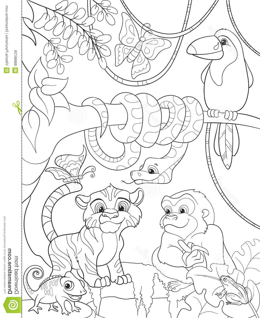 1065x1300 Drawing Of Jungle Animals Jungle Forest With Animals Cartoon
