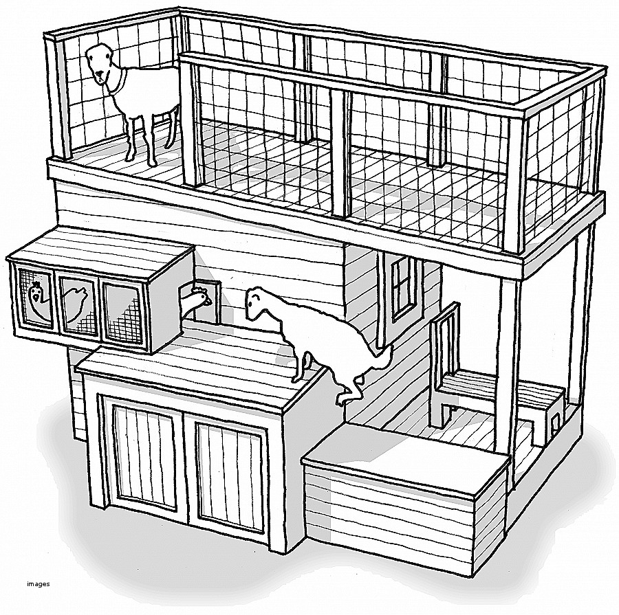 900x895 House Plan. Beautiful Pygmy Goat House Plans Pygmy Goat House