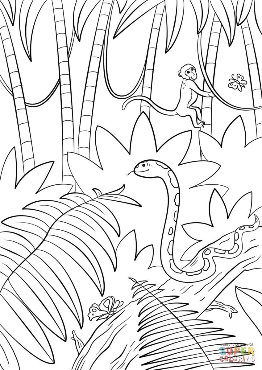 849x1200 Coloring Sheet Jungle Coloring Sheet