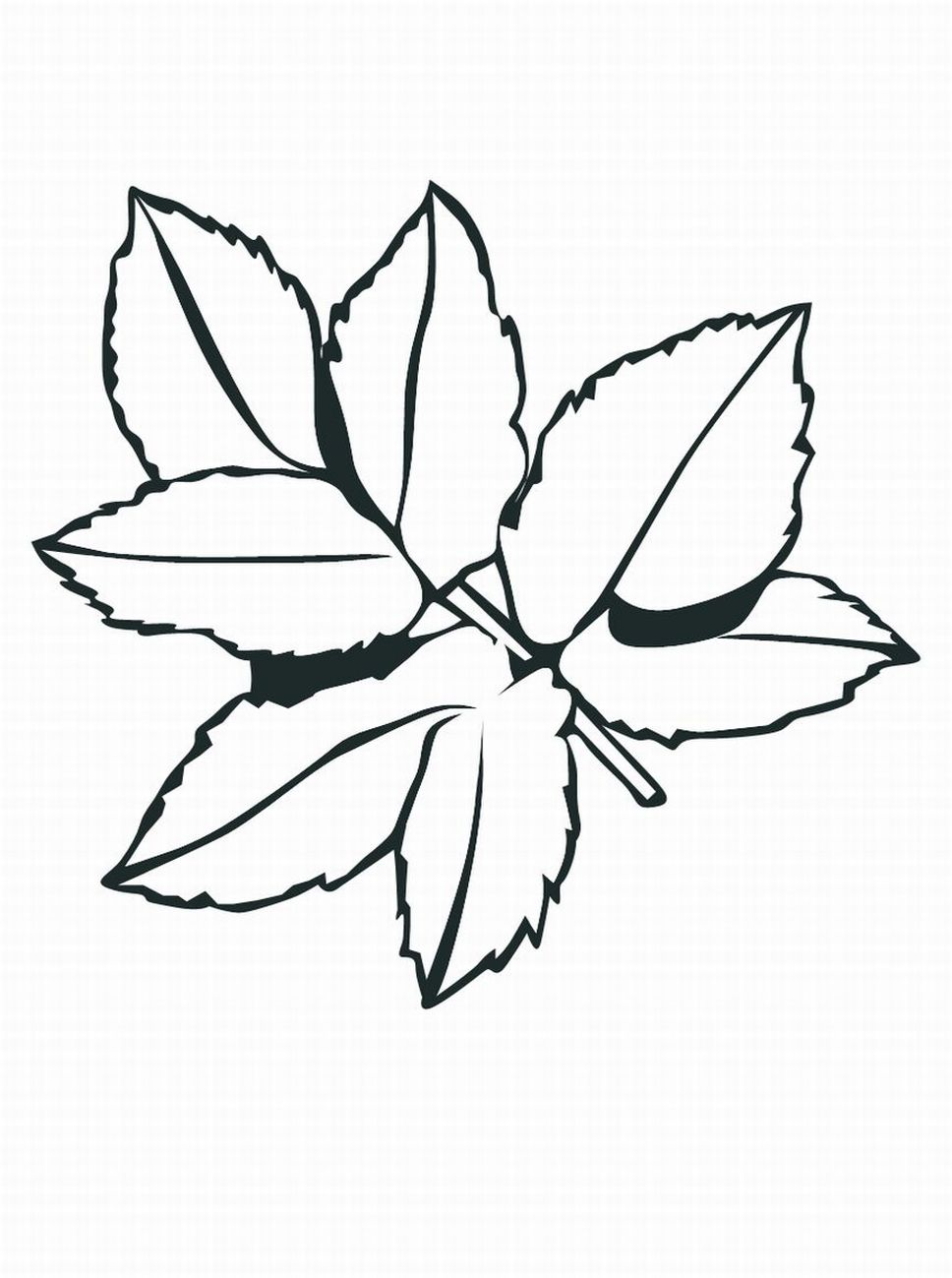 968x1299 Jungle Leaves Coloring Pages