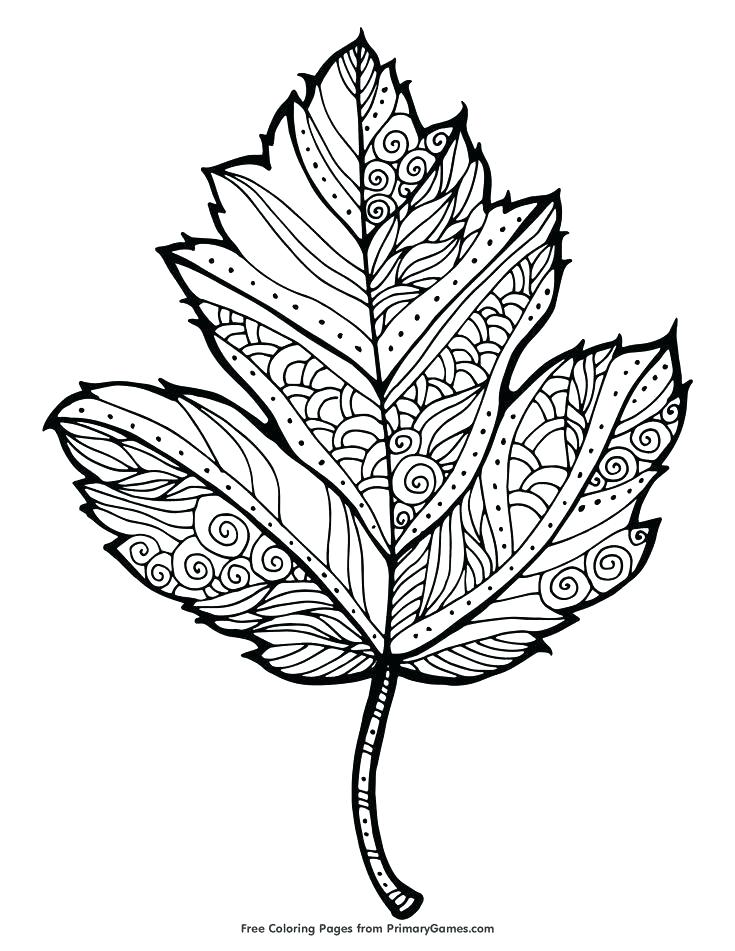 735x951 This Is Fall Coloring Pages Free Printable Images Free Fall